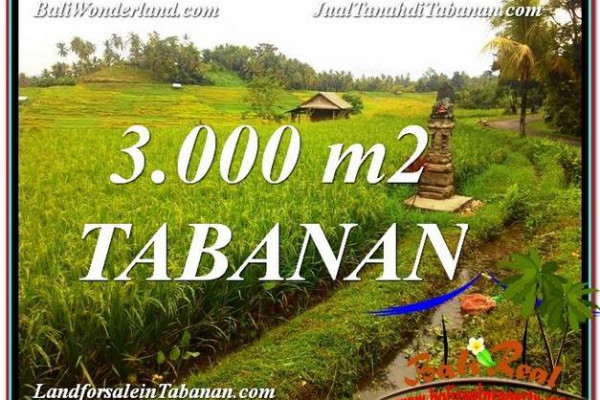 TABANAN BALI 3,000 m2 LAND FOR SALE TJTB328