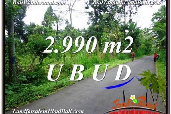 Affordable PROPERTY 2,990 m2 LAND IN Ubud Tegalalang FOR SALE TJUB591