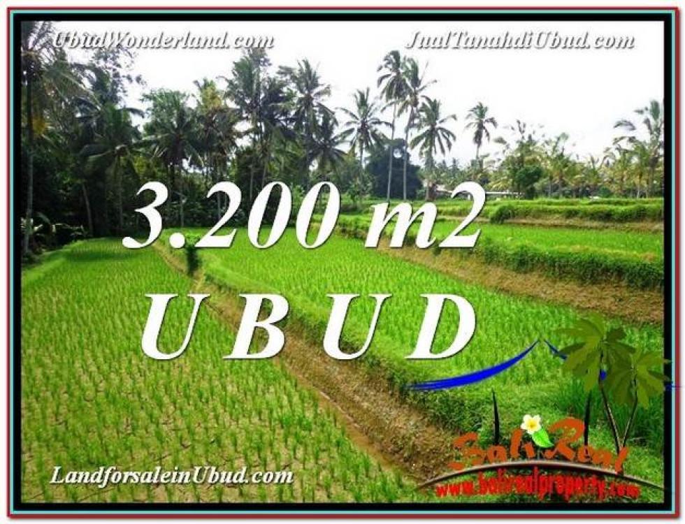 FOR SALE Exotic PROPERTY 3,200 m2 LAND IN UBUD BALI TJUB594