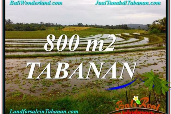 FOR SALE Magnificent PROPERTY LAND IN Tabanan Selemadeg BALI TJTB324