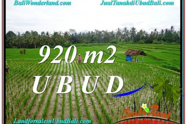 Affordable PROPERTY UBUD LAND FOR SALE TJUB575