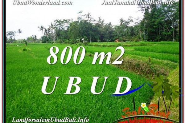 800 m2 LAND IN UBUD BALI FOR SALE TJUB581