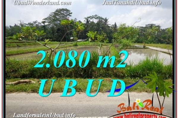 2,080 m2 LAND SALE IN UBUD TJUB582