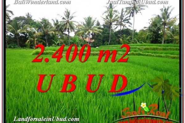 FOR SALE Magnificent 2,400 m2 LAND IN UBUD BALI TJUB587