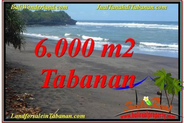Beautiful PROPERTY Tabanan Selemadeg BALI 6,000 m2 LAND FOR SALE TJTB345