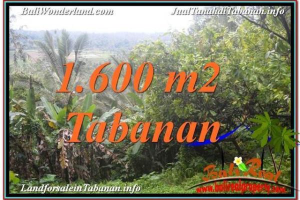 Magnificent TABANAN 1,600 m2 LAND FOR SALE TJTB348