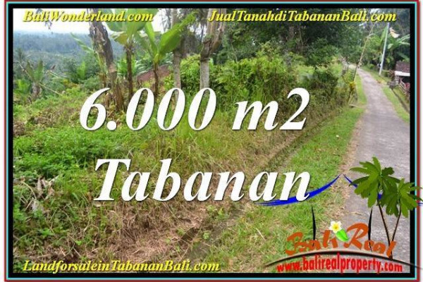Magnificent LAND FOR SALE IN TABANAN BALI TJTB349