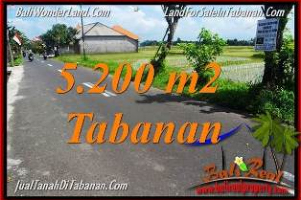 LAND FOR SALE IN Tabanan Kediri TJTB351