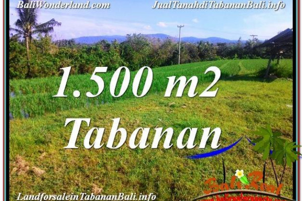 Affordable PROPERTY Tabanan Selemadeg BALI LAND FOR SALE TJTB353