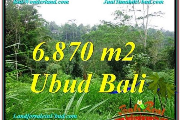 FOR SALE Beautiful PROPERTY 6,870 m2 LAND IN UBUD BALI TJUB602