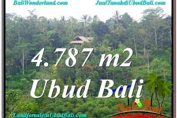 Exotic UBUD BALI 4,787 m2 LAND FOR SALE TJUB603