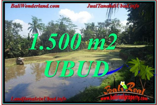 Magnificent PROPERTY LAND IN UBUD FOR SALE TJUB630