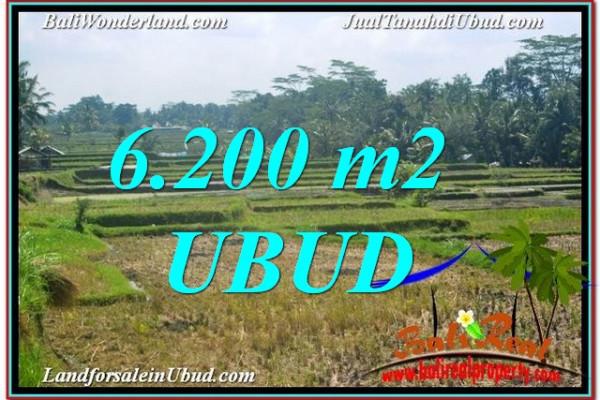 Exotic PROPERTY 6,200 m2 LAND SALE IN UBUD TJUB631
