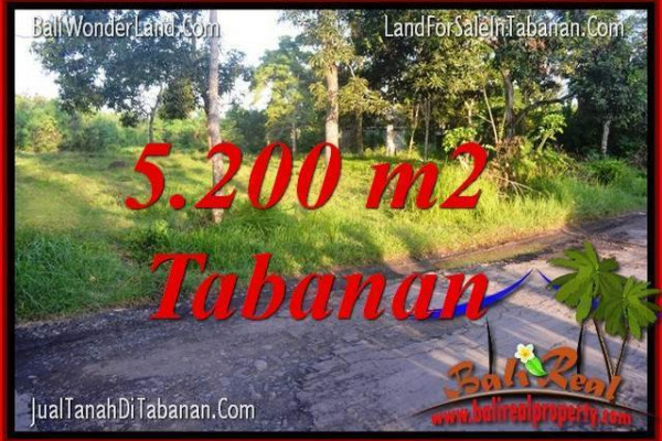 Magnificent PROPERTY LAND IN Tabanan Selemadeg BALI FOR SALE TJTB334