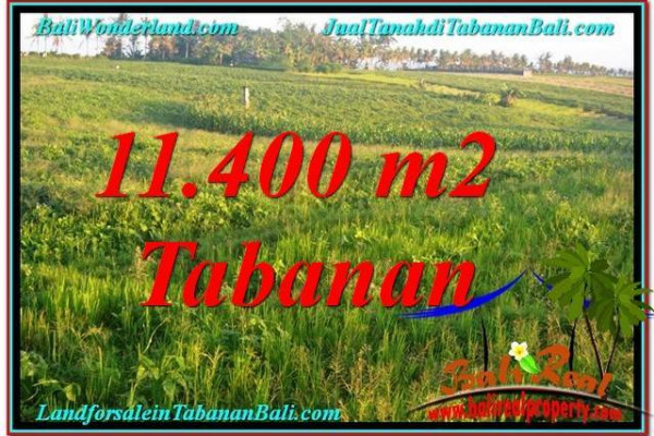 Exotic PROPERTY Tabanan Selemadeg BALI 11,400 m2 LAND FOR SALE TJTB339