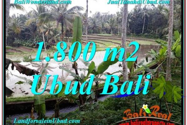 Exotic PROPERTY 1,800 m2 LAND SALE IN UBUD BALI TJUB616