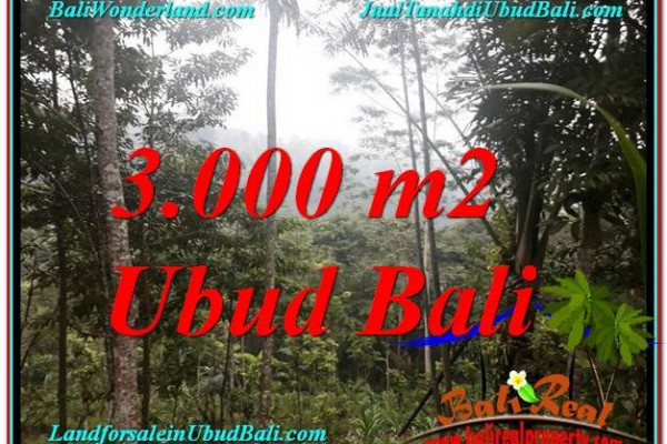 Exotic PROPERTY UBUD LAND FOR SALE TJUB617