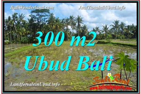 Magnificent PROPERTY LAND SALE IN UBUD TJUB619