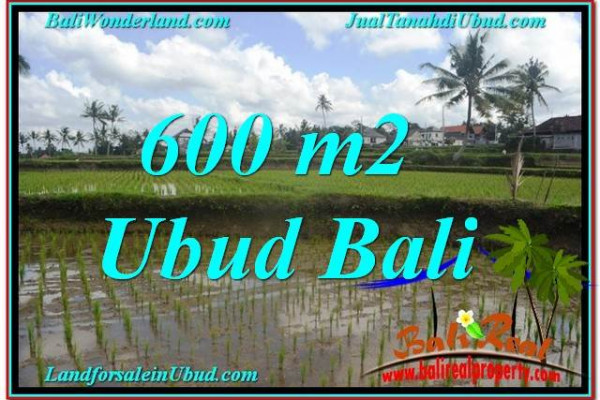 FOR SALE Beautiful PROPERTY LAND IN UBUD TJUB621