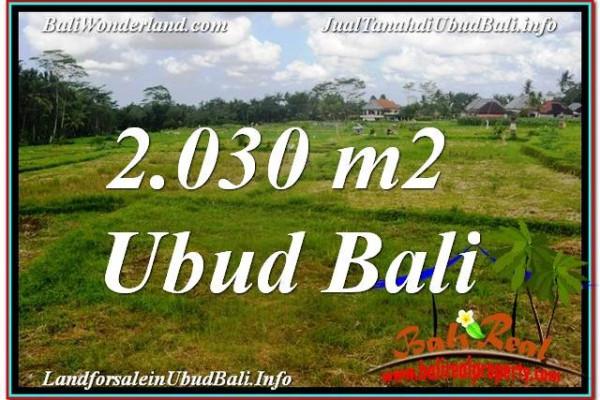2,030 m2 LAND FOR SALE IN UBUD BALI TJUB623