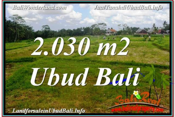 FOR SALE Beautiful PROPERTY 2,030 m2 LAND IN Ubud Tegalalang TJUB623