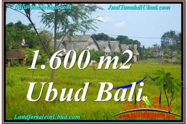 Affordable PROPERTY 1,600 m2 LAND FOR SALE IN Sentral / Ubud Center TJUB633