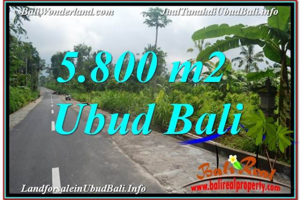 Exotic 5,800 m2 LAND SALE IN UBUD BALI TJUB637