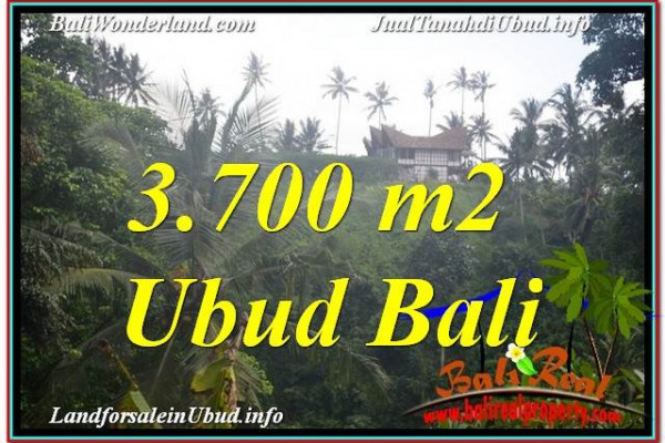 FOR SALE Magnificent PROPERTY 37 Are LAND IN Ubud Center BALI TJUB640