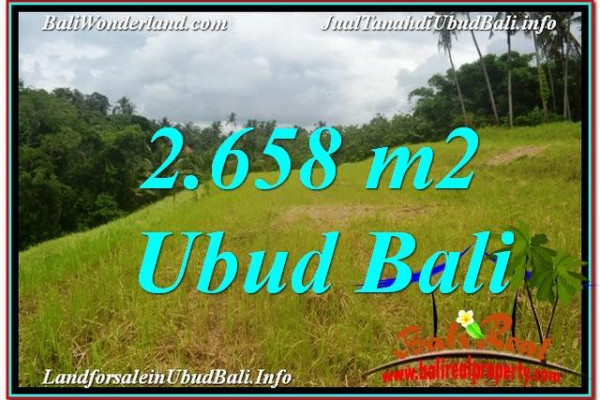 Affordable 2,658 m2 LAND SALE IN UBUD BALI TJUB641
