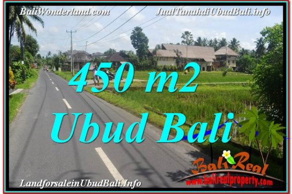 Beautiful PROPERTY Sentral / Ubud Center BALI 450 m2 LAND FOR SALE TJUB647