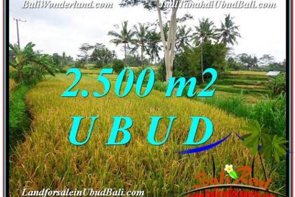 Exotic PROPERTY 2,500 m2 LAND SALE IN Ubud Pejeng TJUB577
