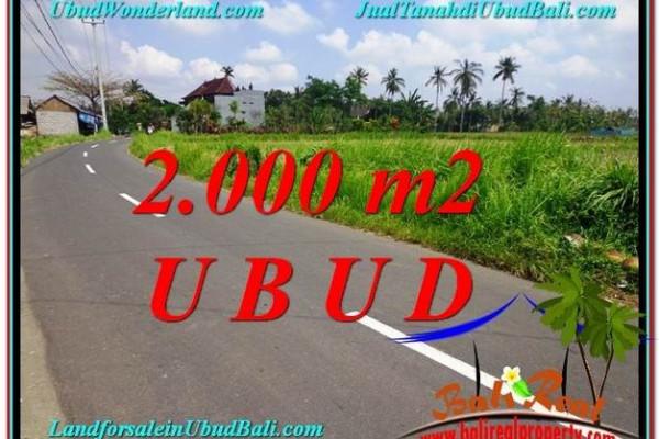 Magnificent PROPERTY 2,000 m2 LAND IN Sentral Ubud FOR SALE TJUB580