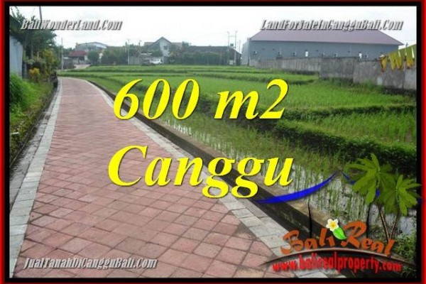 Affordable PROPERTY 600 m2 LAND SALE IN CANGGU TJCG220