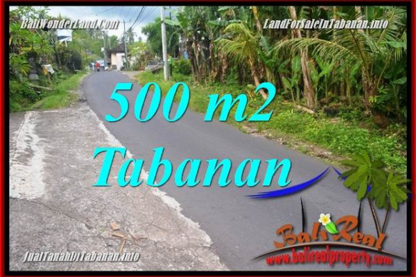 Beautiful PROPERTY LAND FOR SALE IN Tabanan Kerambitan BALI TJTB362
