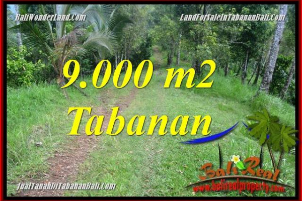 Exotic LAND FOR SALE IN TABANAN BALI TJTB364