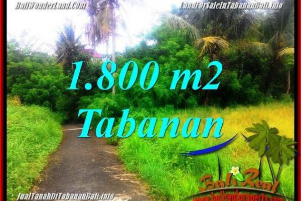 FOR SALE Magnificent PROPERTY LAND IN Tabanan Selemadeg TJTB357