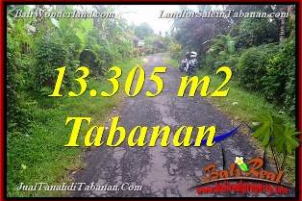 Magnificent PROPERTY Tabanan Selemadeg BALI LAND FOR SALE TJTB367