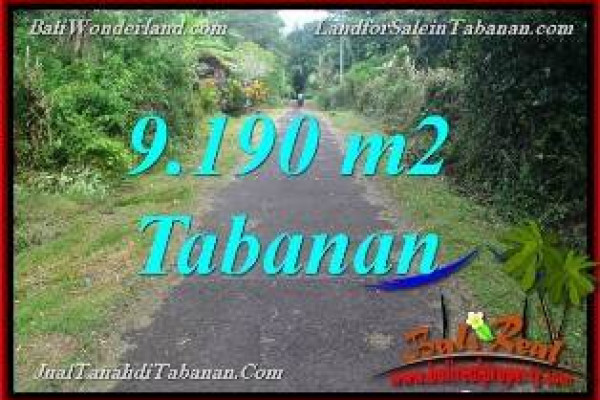 Exotic PROPERTY Tabanan Selemadeg BALI 9,190 m2 LAND FOR SALE TJTB368