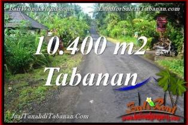 FOR SALE Beautiful PROPERTY 10,400 m2 LAND IN Tabanan Selemadeg BALI