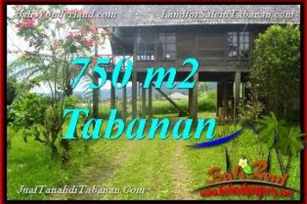 Affordable PROPERTY LAND IN Tabanan Bedugul BALI FOR SALE TJTB370