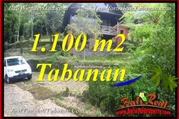 FOR SALE Affordable PROPERTY 1,100 m2 LAND IN Tabanan Bedugul BALI