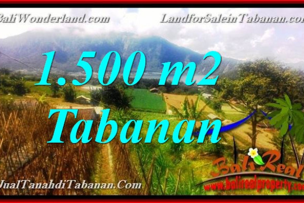 Magnificent LAND FOR SALE in TABANAN BALI TJTB373