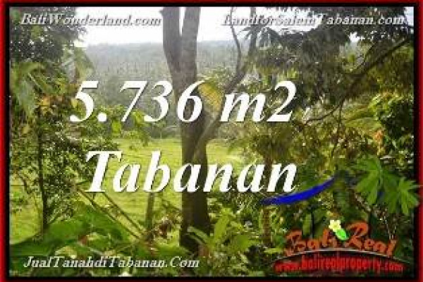 Exotic PROPERTY 5,736 m2 LAND FOR SALE IN TABANAN Selemadeg BALI