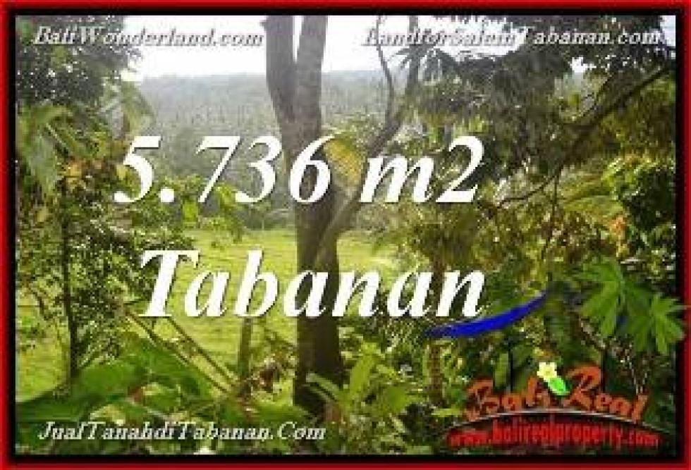 Exotic PROPERTY LAND IN Tabanan Selemadeg BALI FOR SALE TJTB376