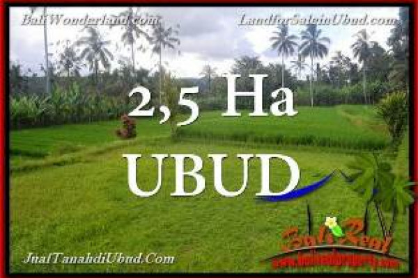 FOR SALE Affordable PROPERTY 25,000 m2 LAND IN UBUD BALI TJUB655