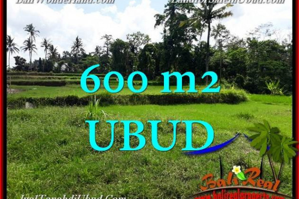 Exotic PROPERTY 600 m2 LAND FOR SALE IN Ubud Pejeng TJUB657
