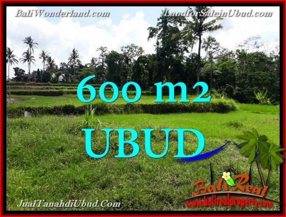 Magnificent PROPERTY Ubud Pejeng Bali LAND FOR SALE TJUB657