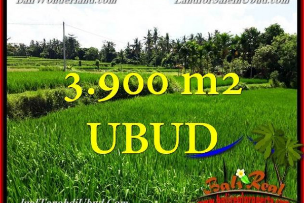 Beautiful Ubud Pejeng BALI LAND FOR SALE TJUB658