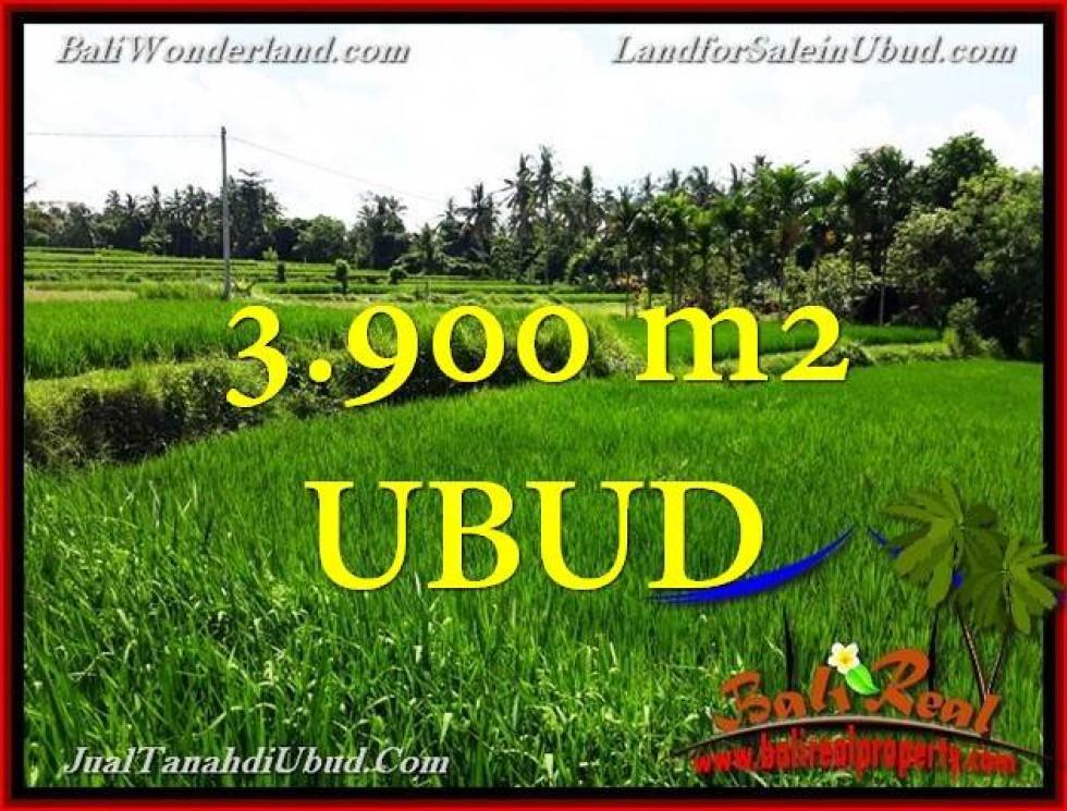FOR SALE Affordable PROPERTY LAND IN Ubud Pejeng BALI TJUB658