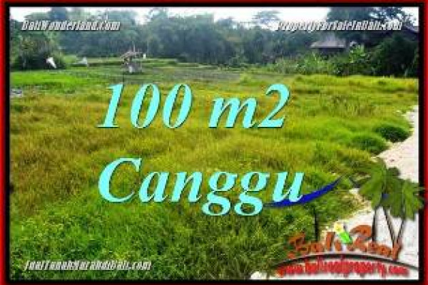 FOR SALE Beautiful 100 m2 LAND IN CANGGU BALI TJCG227